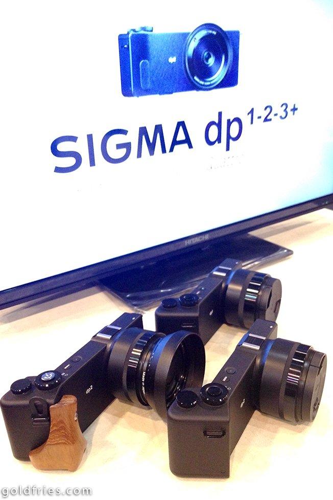 sigma_01